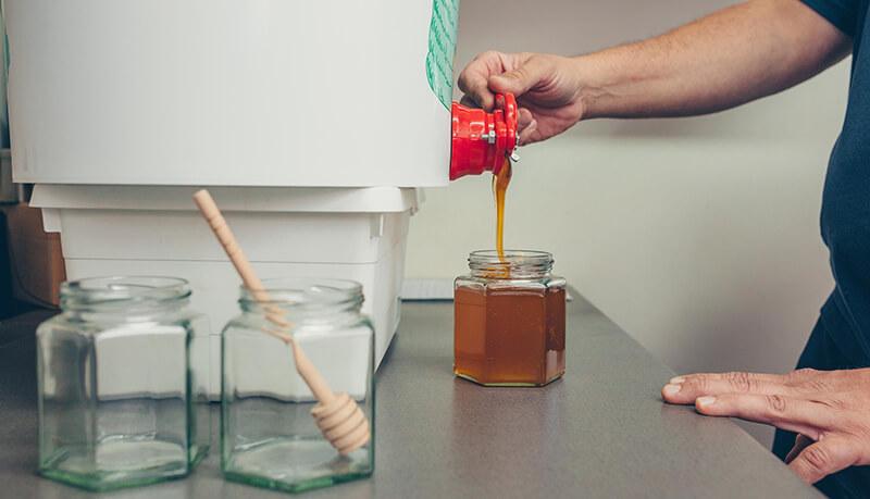 Bee at den hof geslingerde honing